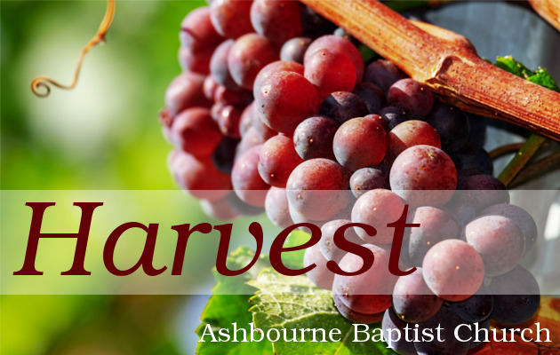 Harvest Sermon Series Cover
